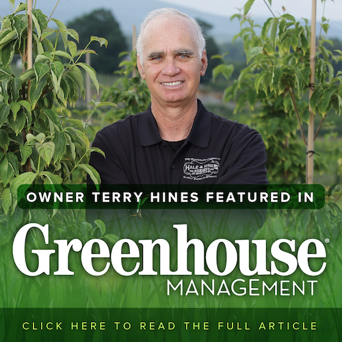 About Us Hale And Hines Nursery